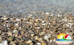 Пляж и море БО Прибой фото 11