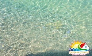 Пляж и море БО Прибой фото 13