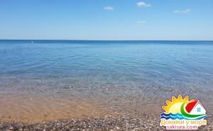 Пляж и море БО Прибой фото 14
