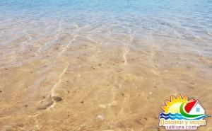 Пляж и море БО Прибой фото 15