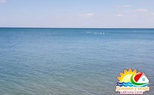 Пляж и море БО Прибой фото 16